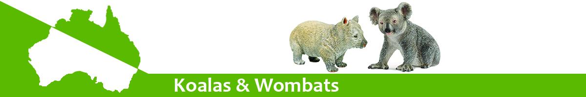 Koalas & Wombats banner