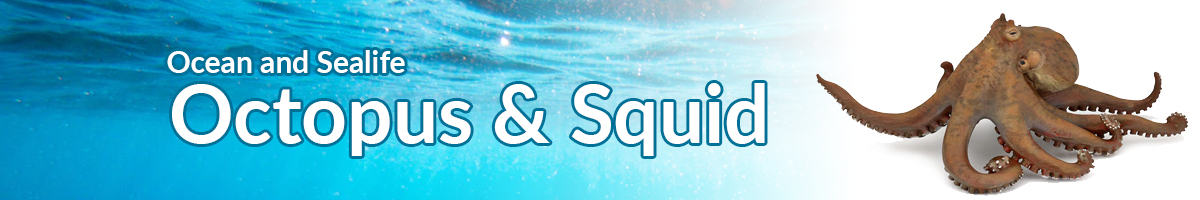 Ocean and Sealife octopus and squid banner - Click here to go back to Ocean and Sealife