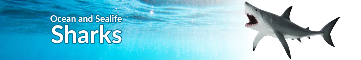 Ocean and Sealife sharks banner - Click here to go back to Ocean and Sealife