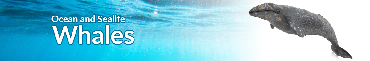 Ocean and Sealife whales banner - Click here to go back to Ocean and Sealife