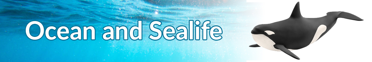 ocean-and-sealife.jpg