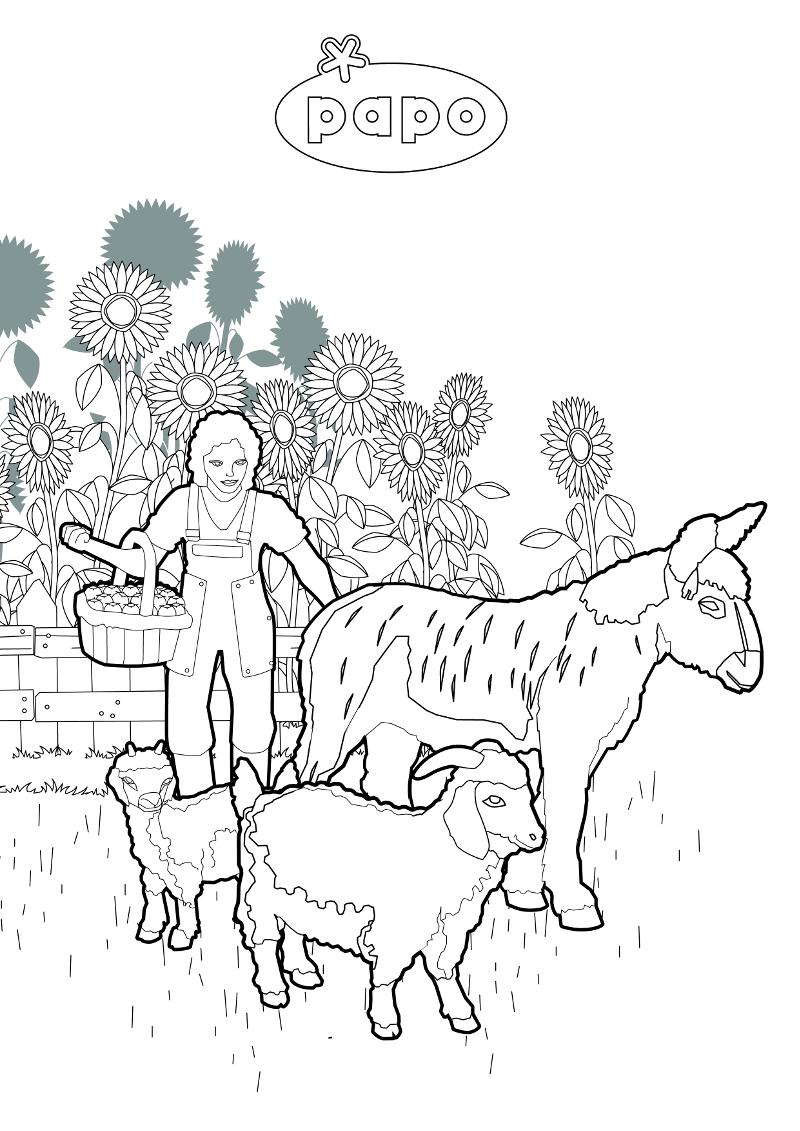 papo-spring-farm-colouring-sml.jpg