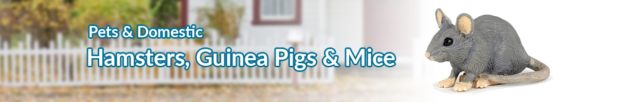 Pets and Domestic hamsters, guinea pigs and mice banner - Click here to go back to Pets and Domestic