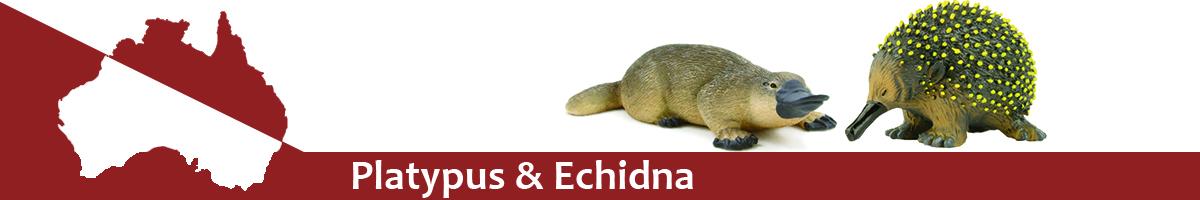 Platypus & Echidna banner