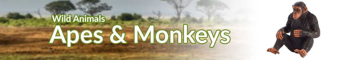 Wild Animals Apes & Monkeys banner - Click here to go back to Wild Animals