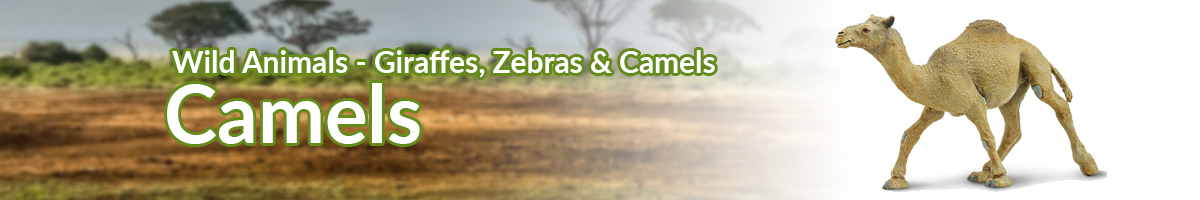 Wild Animals Camels banner - Click here to go back to Wild Animals