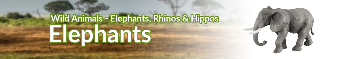 Wild Animals Elephants banner - Click here to go back to Wild Animals