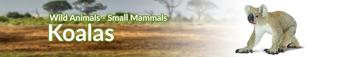 Wild Animals Koalas banner - Click here to go back to Wild Animals