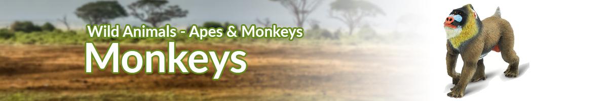 Wild Animals Monkeys banner - Click here to go back to Wild Animals