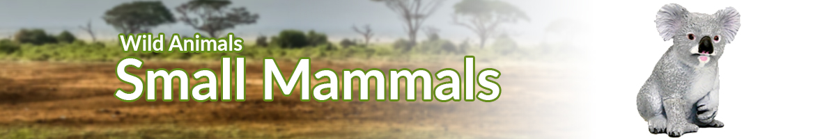 Wild Animals Small Mammals banner - Click here to go back to Wild Animals