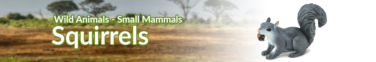 Wild Animals Squirrels banner - Click here to go back to Wild Animals