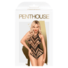 PENTHOUSE GO HOTTER