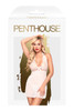 PENTHOUSE SWEET & SPICY WHITE