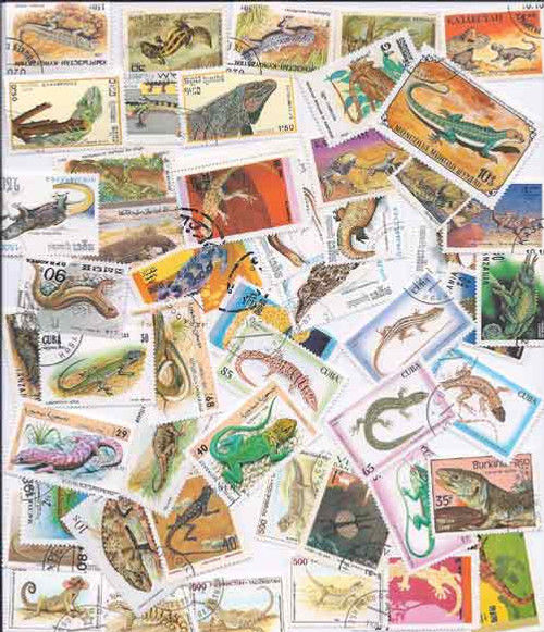 Lizards on Stamps - Collection of 50 Different Stamps