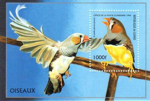 Guinea  1996 Birds Stamp Souvenir Sheet Scott #1374 7B-1742