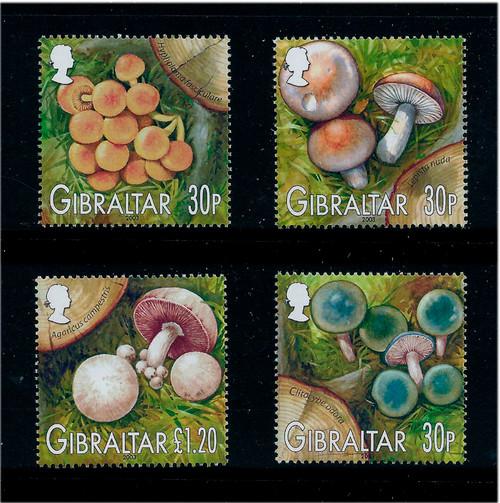 Gibraltar 2003 Native Mushrooms 4 Stamp Mint Set #950-3