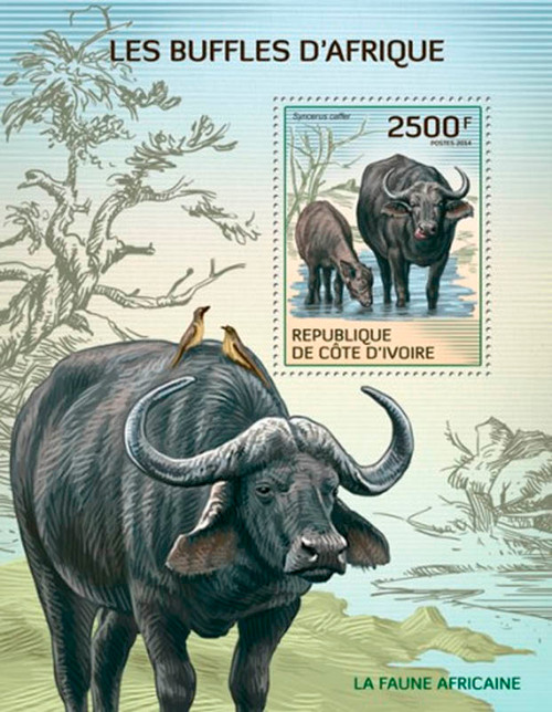 Ivory Coast 2014 African Cape Buffalo Mint Stamp S/S  9A-236