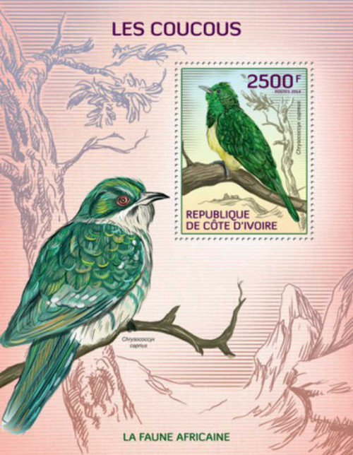 Ivory Coast 2014 Cuckoo Birds of Africa MNH Stamp S/S 9A-244