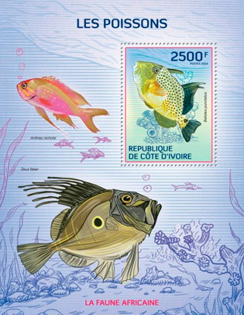 Ivory Coast 2014 Colorful Fish of Africa Mint Stamp S/S 9A-254