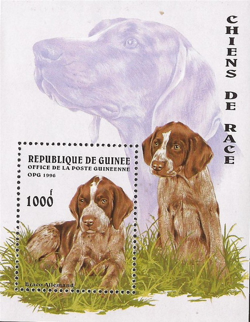 Guinea - 1996 Dogs - Stamp Souvenir Sheet - Scott #1346