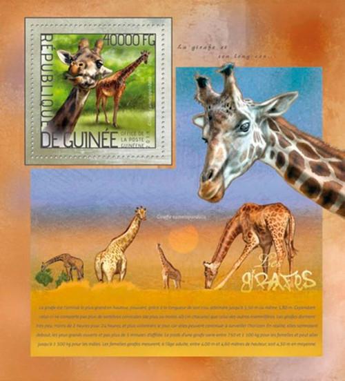 Guinea 2014 Wild African Animals Giraffes Stamp Souvenir Sheet 7B-2407