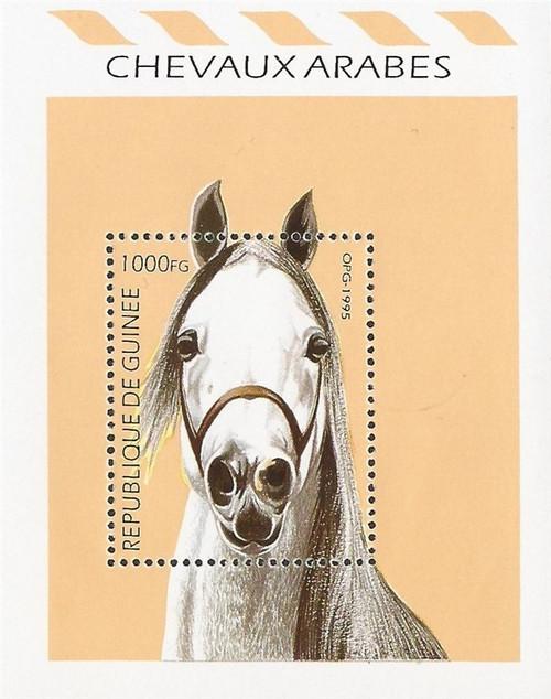 Guinea - 1995 Arabian Horse - Stamp Souvenir Sheet - Scott #1330