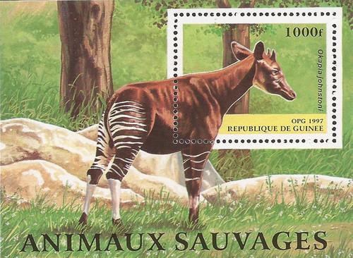 Guinea - 1997 Okapia Johnstoni Giraffe - Souvenir Sheet - Scott #1395
