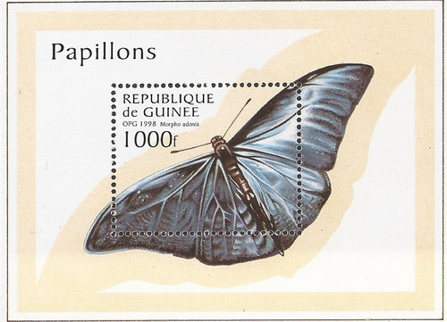 Guinea - 1997 Adonis Morpho Butterflies - Souvenir Sheet #1430