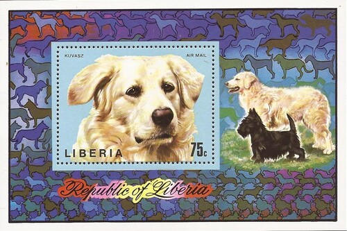Liberia - 1974 Hungarian Sheepdog - Souvenir Sheet - Scott #C202