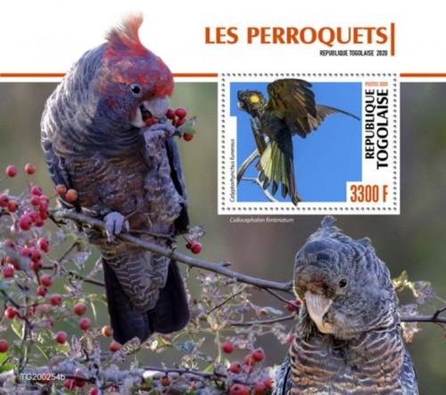 Togo - 2020 Yellow-tailed Black Cockatoo Parrots - Stamp Souvenir Sheet TG200254b