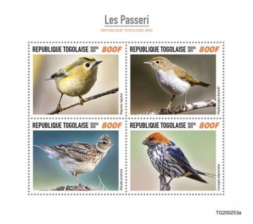 Togo - 2020 Songbirds, Goldcrest, Eurasian Skylark - 4 Stamp Sheet - TG200253a