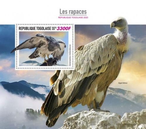 Togo - 2020 Birds of Prey, Buzzard-eagle - Stamp Souvenir Sheet - TG200251b