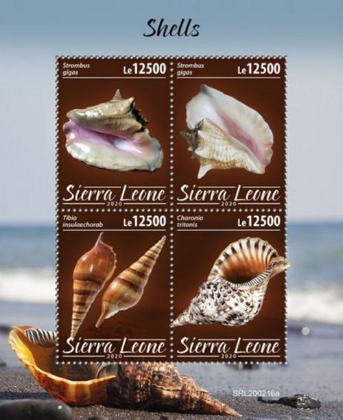 Sierra Leone - 2020 Seashells, Triton's Trumpet - 4 Stamp Sheet - SRL200216a