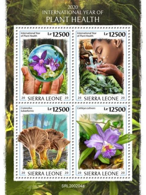 Sierra Leone - 2020 International Year of Plant Health - 4 Stamp Sheet - SRL200204a