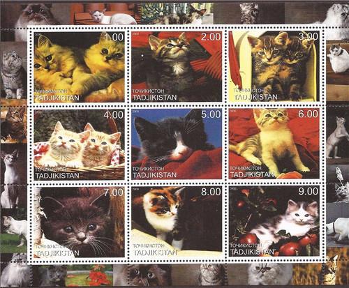 Tajikistan - 2000 Domestic Cat Breeds - 9 Stamp Sheet - 20A-134