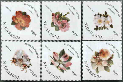 Nicaragua - Roses - Complete MNH Set of 6