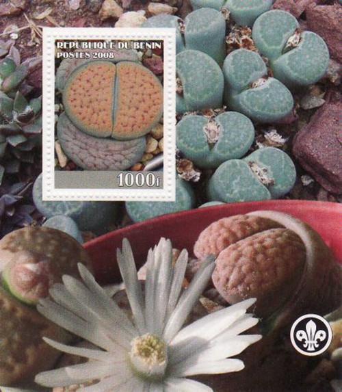Benin - 2008 - Seed Pods - Mint Souvenir Sheet MNH - 2B-137