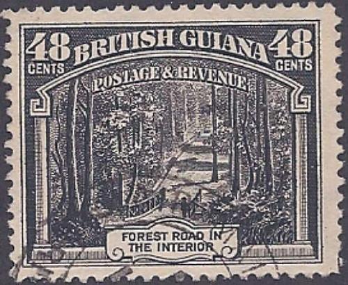 British Guiana 1934 Forest Road F/VF U Scott #217