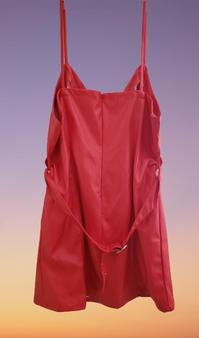 Red Buckle PU Dress