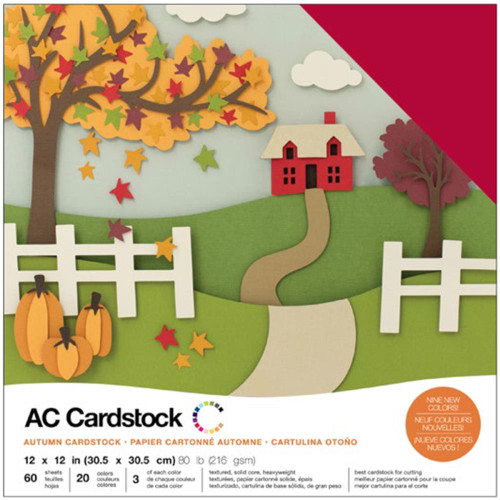 American Crafts Variety Cardstock 60/Pkg - Autumn