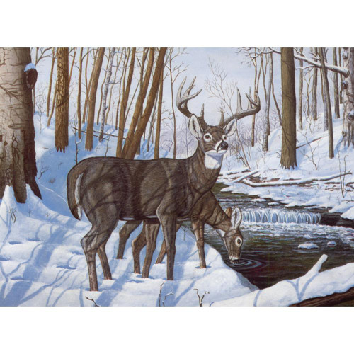 Royal Langnickel Paint By Number Kit - Winter Bliss