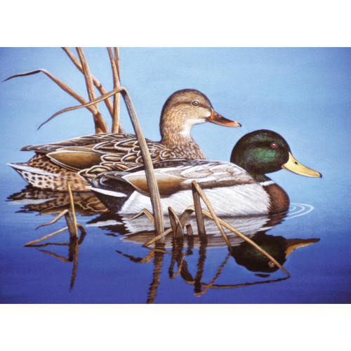 Royal Langnickel Paint By Number Kit - Blue Water Mallards
