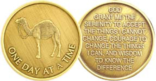 AA Bronze Medallion Coin - One Day At A Time Camel