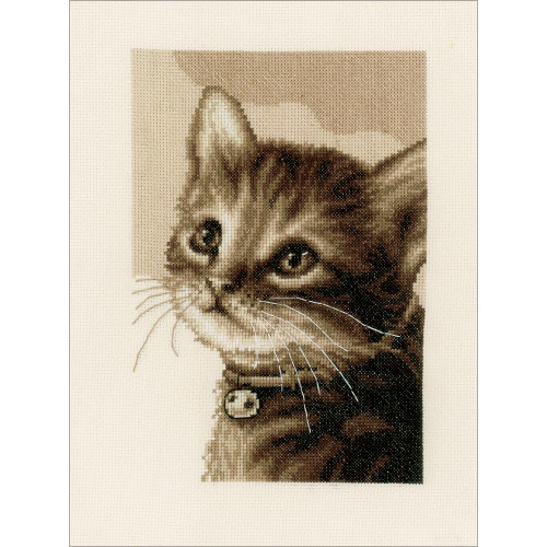 Kitten On Aida Counted Cross Stitch Kit