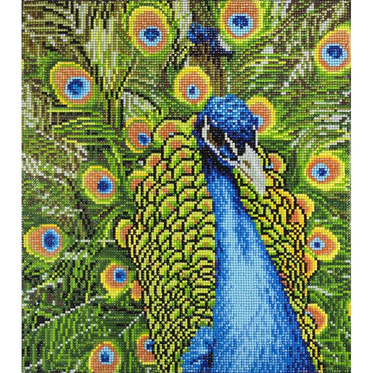Diamond Art Advanced Kit - Peacock