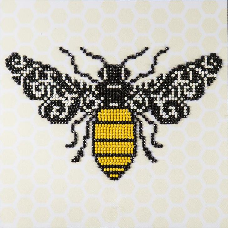 Leisure Arts Bee Diamond Art Beginner Kit