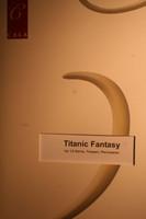 Horner, James - Titanic Fantasy