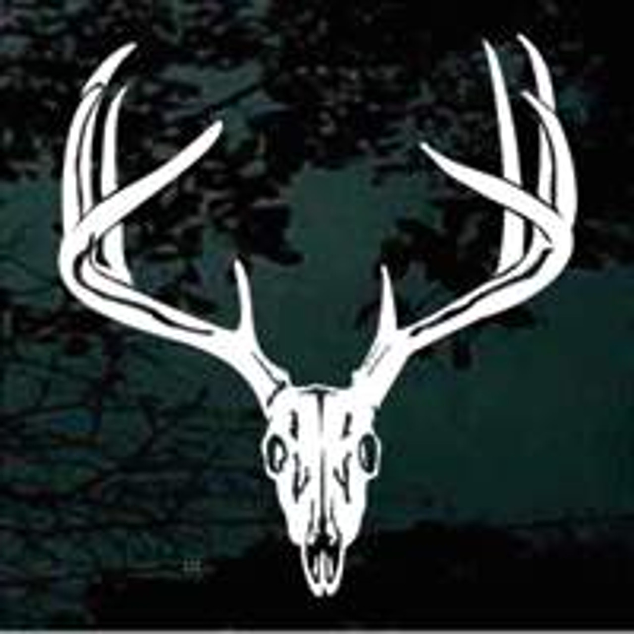 Deer Skull 01 Window Decal