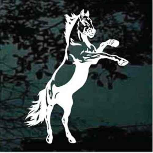 Rearing Mustang Horse