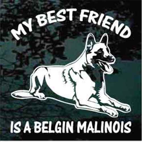 Best Friend Belgian Malinois Down Window Decal